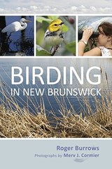 Birding in New Brunswick | Roger Burrows |