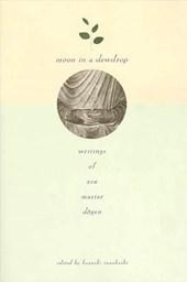 Moon in a Dewdrop