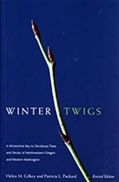 Winter Twigs | Helen Margaret Gilkey |