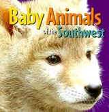 Baby Animals of the Southwest | auteur onbekend |