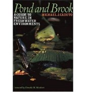 Pond and Brook