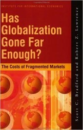 Has Globalization Gone Far Enough? - The Costs of Fragmented Markets