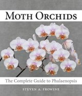 Moth Orchids | Steven A. Frowine |