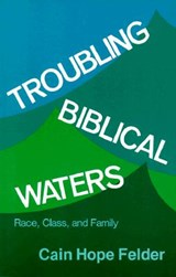 Troubling Biblical Waters | Cain Hope Felder |