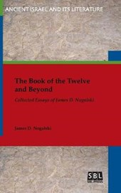 The Book of the Twelve and Beyond