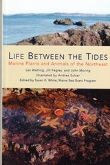 Life Between the Tides | Les Watling |