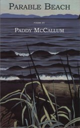 Parable Beach | Paddy McCallum |