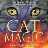 Cat Magic | Patricia Telesco |