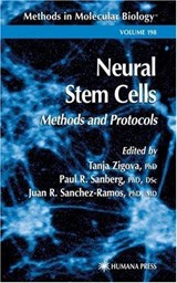 Neural Stem Cells | Tanja Zigova |