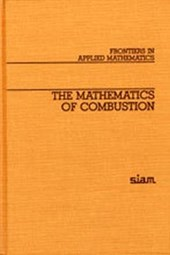 The Mathematics of Combustion