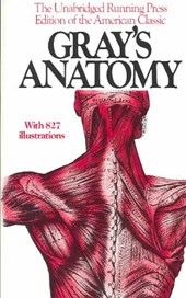 Gray's anatomy | Henry Gray |