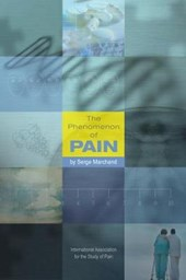 Phenomenon of Pain