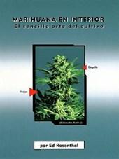 Marijuana en interior