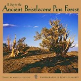 A Day in the Ancient Bristlecone Pine Forest |  |