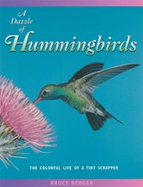 A Dazzle of Hummingbirds | Bruce Berger |