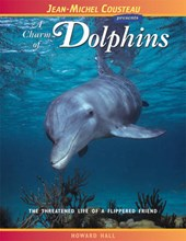 A Charm of Dolphins