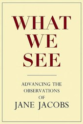 What We See | Stephen A. Goldsmith |