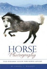 Horse Photography | Carol J. Walker |