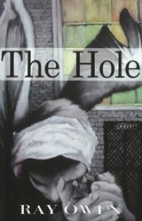 The Hole | Ray Owen |