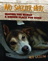 No Shelter Here | Rob Laidlaw |