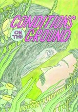 Conditions on the Ground |  |