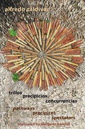 Trillos / Precipicios / Concurrencias - Pathways / Precipices / Spectators