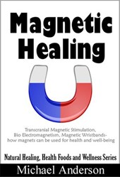 Magnetic Healing: Transcranial Magnetic Stimulation, Bio Electromagnetism, Magnetic Wristbands- How Magnets can be used for Health and Well-being (Natural Healing, Health Foods and Wellness Series, #1