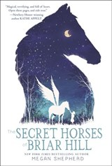 Secret Horses of Briar Hill | Megan Shepherd |