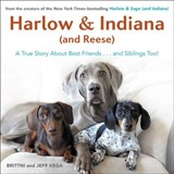 Harlow & Indiana (and Reese) | Brittni Vega |