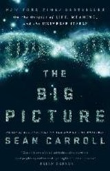 The Big Picture | Sean Carroll |