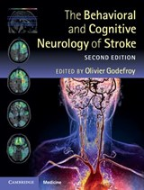 The Behavioral and Cognitive Neurology of Stroke | Olivier Godefroy |