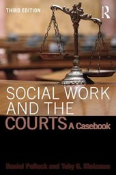 Social Work and the Courts | Daniel Pollack; Toby Kleinman |