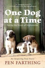 One Dog at a Time | Pen Farthing |