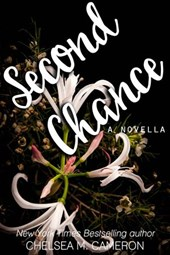 Second Chance (Violet Hill, #3)