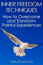 Inner Freedom Techniques: How to Overcome and Transform Painful Experiences (Reintegration Fundamentals, #1)