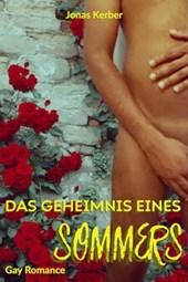 Das Geheimnis eines Sommers (Gay Romance)