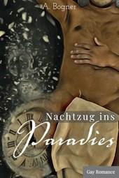 Nachtzug ins Paradies: A Gay Romance