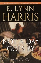 Not a Day Goes by | E. Lynn Harris |