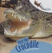Meet the Crocodile