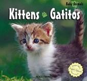 Kittens/ Gatitos