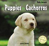 Puppies/Cachorros | Alice Twine |