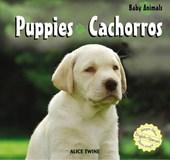 Puppies/Cachorros