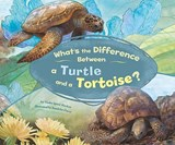 What's the Difference Between a Turtle and a Tortoise? | Trisha Speed Shaskan |