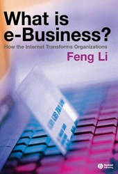 What is e-business? | Feng Li |