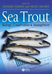 Sea Trout | Graeme Harris |