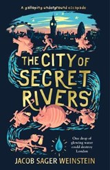 City of Secret Rivers | Jacob Sager Weinstein |