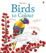 Birds to Colour | Megan Cullis |