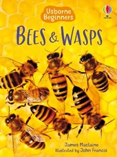 Bees and Wasps | James Maclaine |