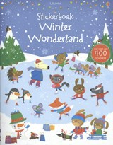 Stickerboek Winter Wonderland | auteur onbekend | 9781409565598