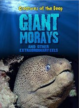 Giant Morays and Other Extraordinary Eels | Casey Rand |